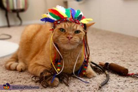 Chief Cat Costume