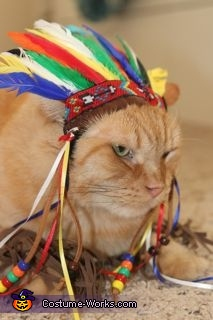 Chief Leopold 2, Chief Cat Costume