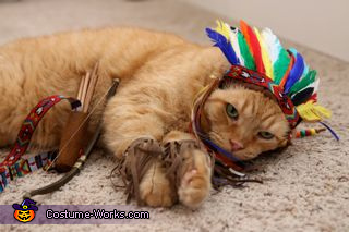 Chief Leopold 3, Chief Cat Costume