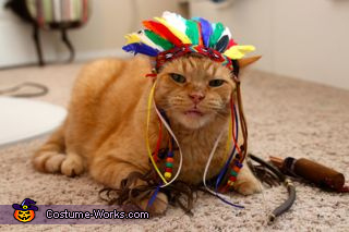Chief Leopold 4, Chief Cat Costume