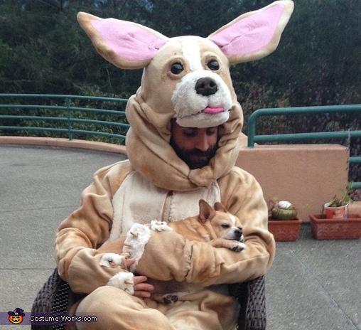 Chihuahua Costume
