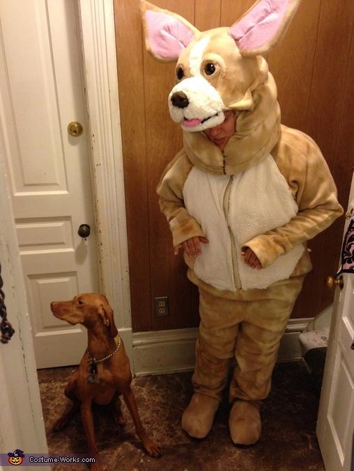 Chihuahua Homemade Costume