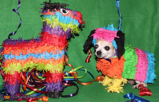 Chihuahua Pinata Costume