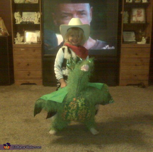 Childs Dragon Rider - Homemade costumes for kids