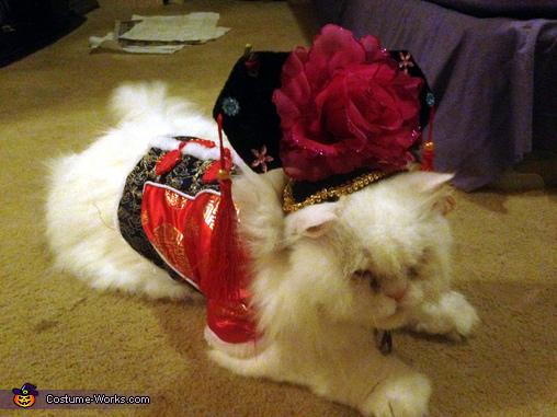 Chinese Princess Cat Costume