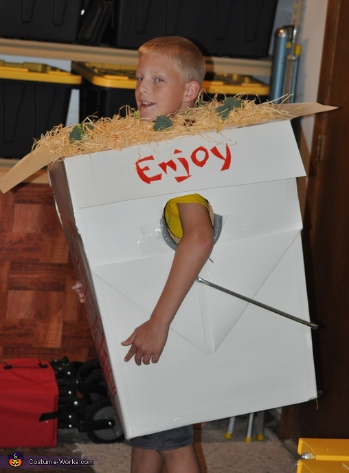 Chinese Takeout Homemade Costume