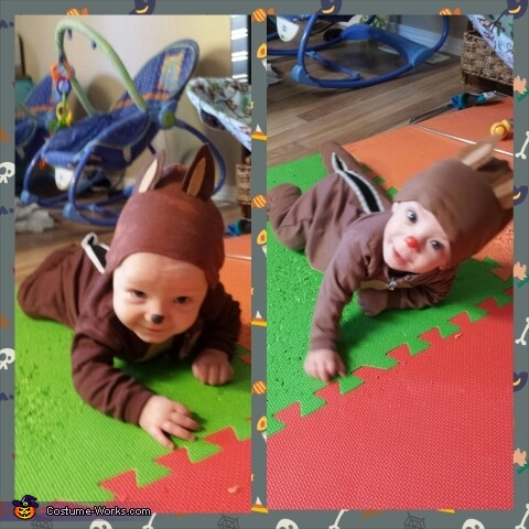 Evan and Justin as Chip and Dale, Twins Chip and Dale Chipmunks Costume