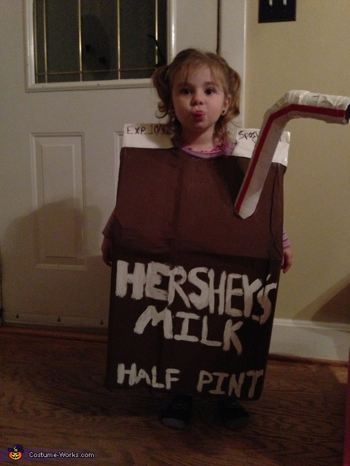 Chocolate Milk Costume