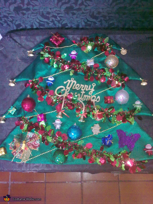 The front side, Christmas Tree Costume