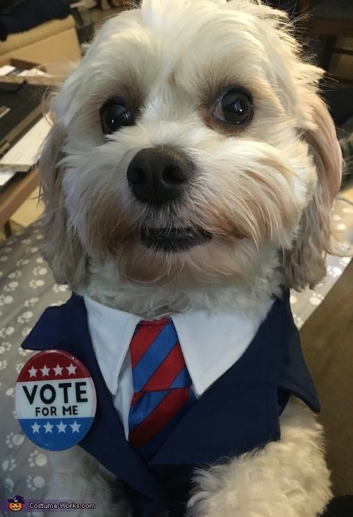 Chuck for President Costume