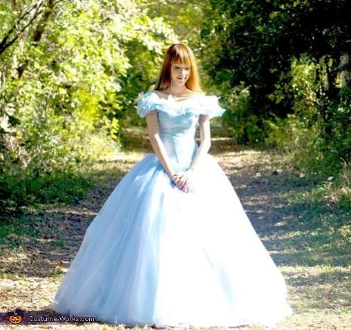 Cinderella Costume Halloween