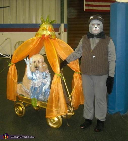 Cinderella Dog's Costume