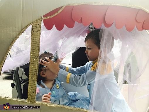 Crowning Cinderella, Cinderella Costume