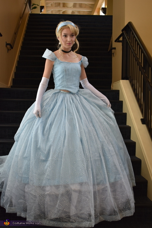 Looking for GusGus, Cinderella Costume