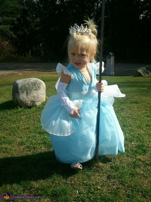 I am outside saying goodbye to the birds., Cinderella Costume