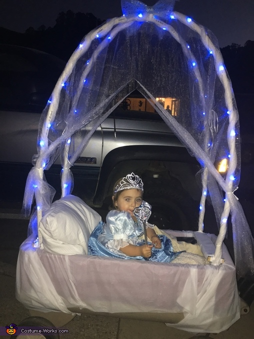 Cinderella and her Carriage Costume