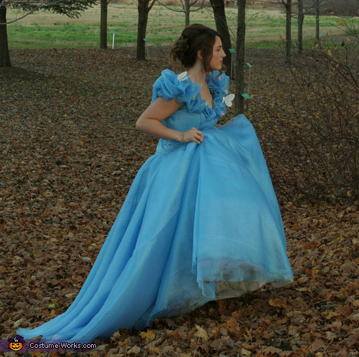 Searching for the Ball, Cinderella: Belle of the Ball Costume