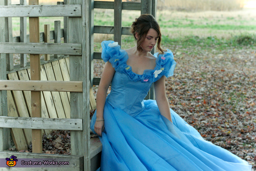 Waiting, Cinderella: Belle of the Ball Costume