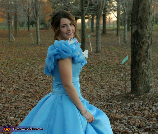 Meeting the Prince, Cinderella: Belle of the Ball Costume