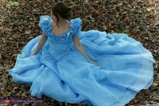 Showing off the Skirt, Cinderella: Belle of the Ball Costume
