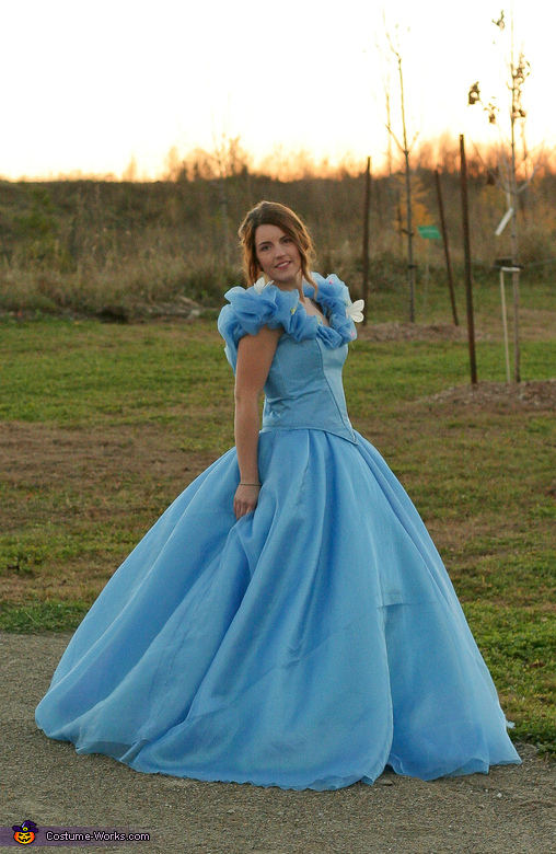 Cinderella: Belle of the Ball Costume