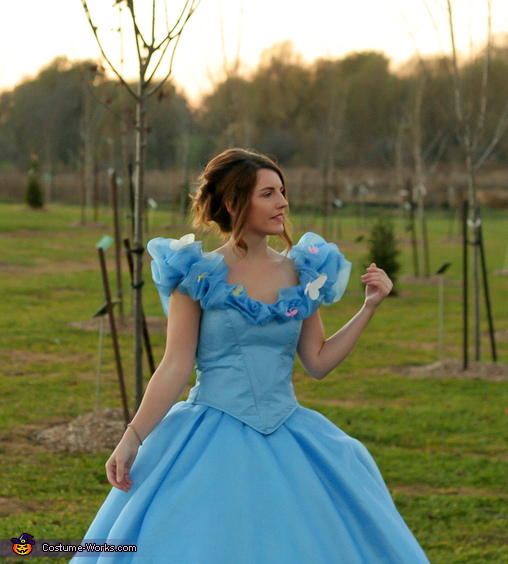 Nervous, Cinderella: Belle of the Ball Costume