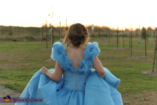 Midnight, Cinderella: Belle of the Ball Costume