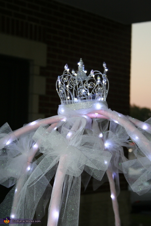 Cinderella Carriage Homemade Costume