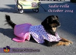 Sadie-rella 2014, Sadie-Rella Costume