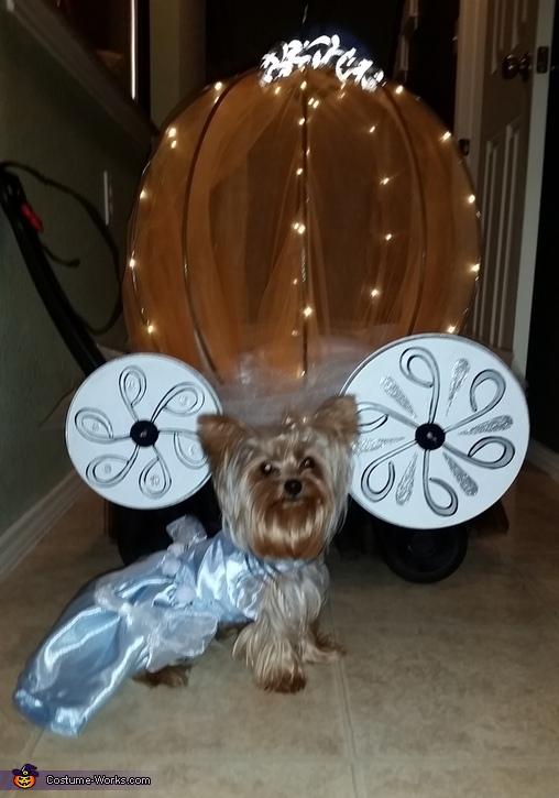 Beautiful Cinderella dress, Cinderella Dog Costume