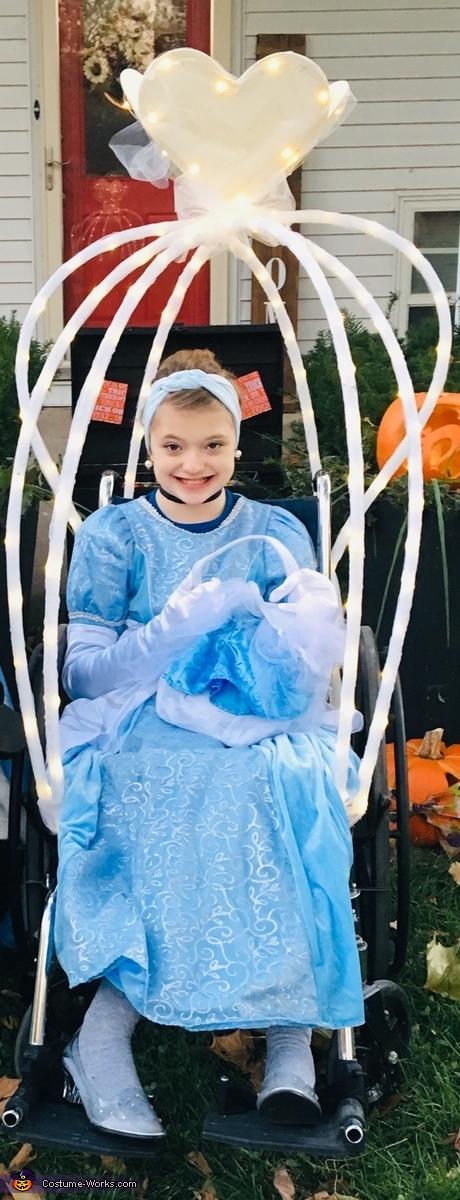 The Lovely Cinderella, Cinderella Family Costume