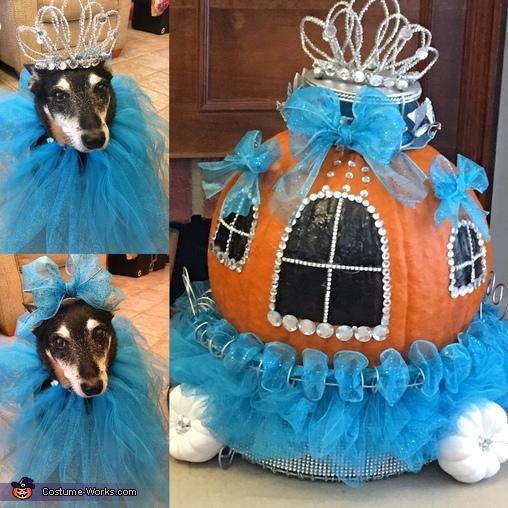 Cinderella, Cinderella Princess Costume