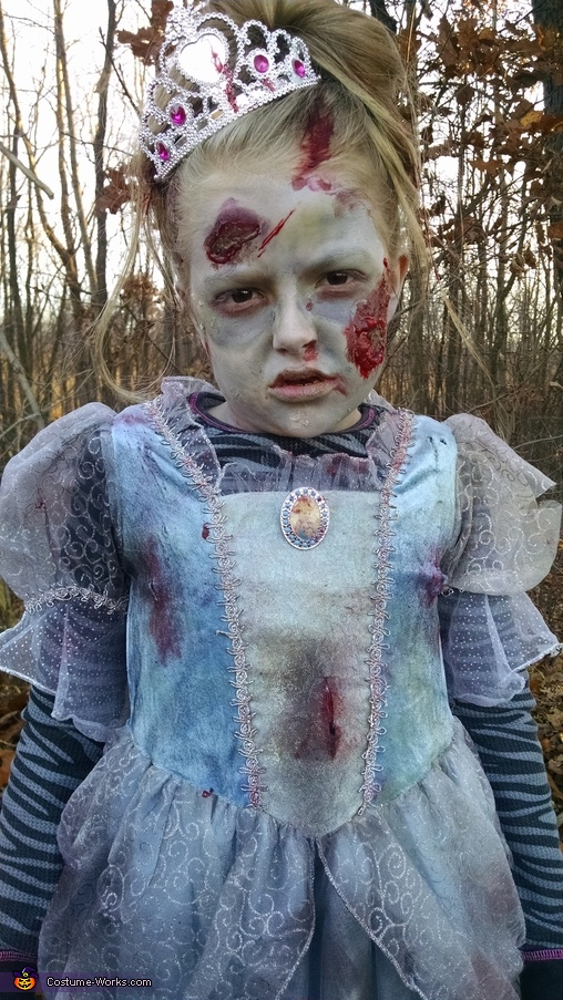 Cinderella Zombie Homemade Costume