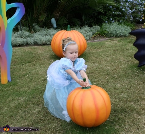 Picking the best pumpkin for her carriage! , Cinderella Girl's Costume