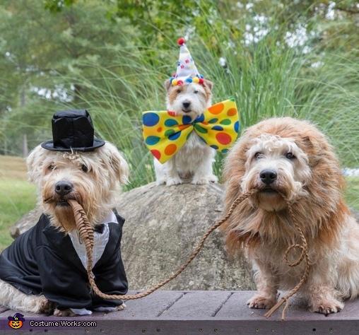 Cirque de Terrier Costume