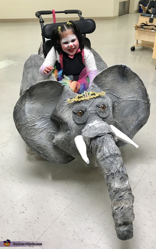 Clown and Elephant Homemade Costume