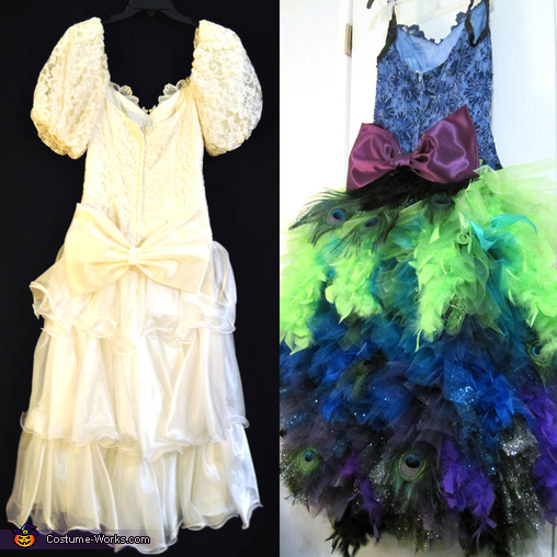 Before and after back, Colorful Peacock Costume