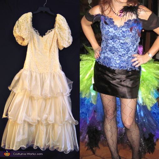 Before and after front, Colorful Peacock Costume