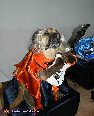 Princess and her guitar, Cookie and Queens 5 Rock Band Dog Costume