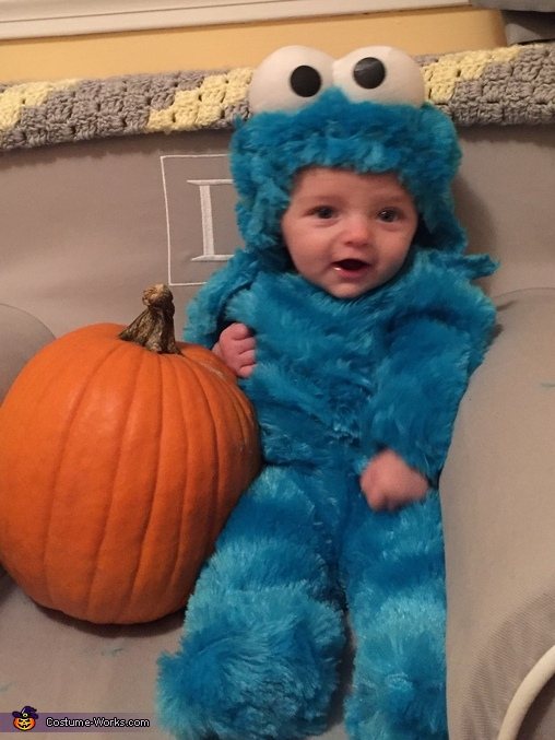 Cookie Monster, Cookie Monster, Milk and Cookie Costume