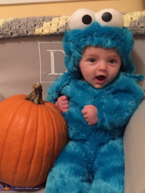 Cookie Monster, Milk and Cookie Costume