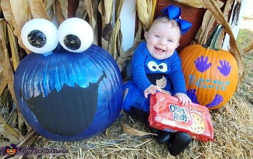 Cookie Monster Homemade Costume