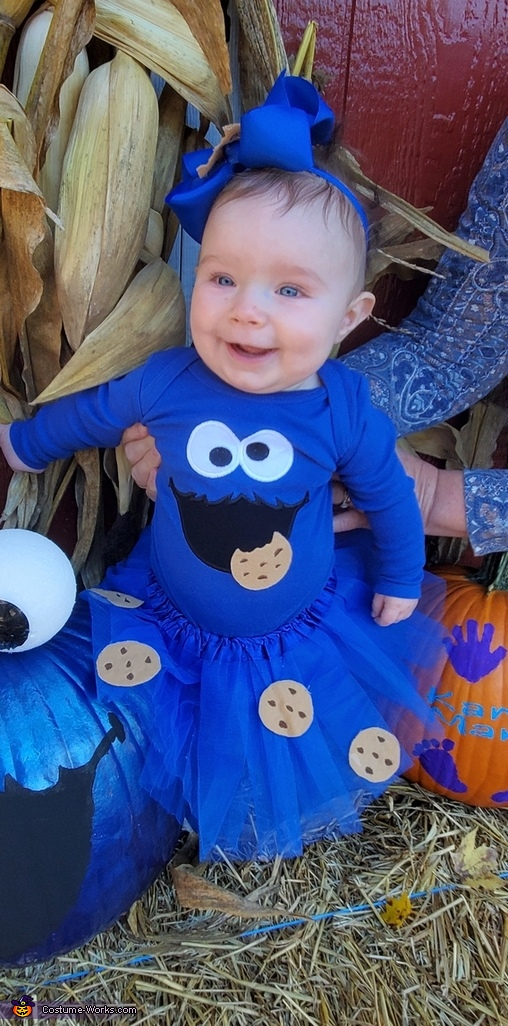 Cookie Monster Homemade Costume