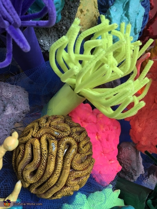Sea anemone and brain coral., Coral Reef Costume