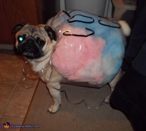 Cotton Candy Pug Dog Costume