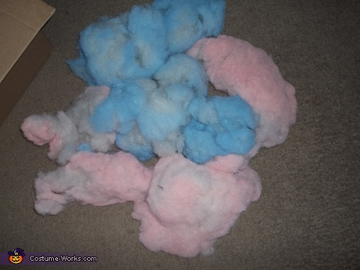 Homemade Cotton Candy Costume for Dogs