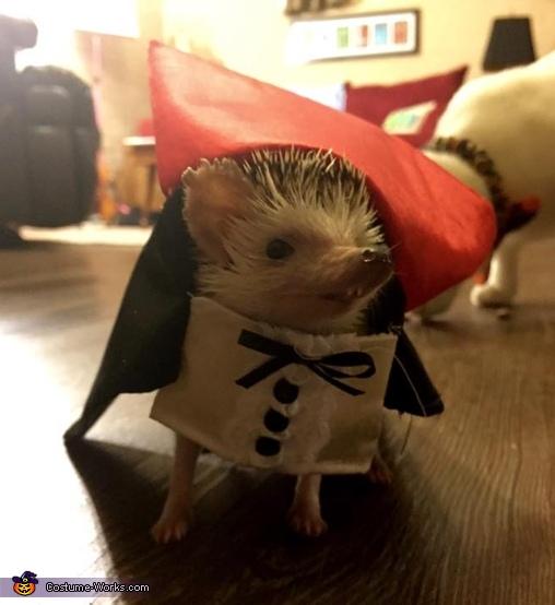 Count Hogula Costume