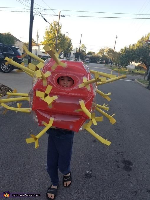 Covid19 Homemade Costume