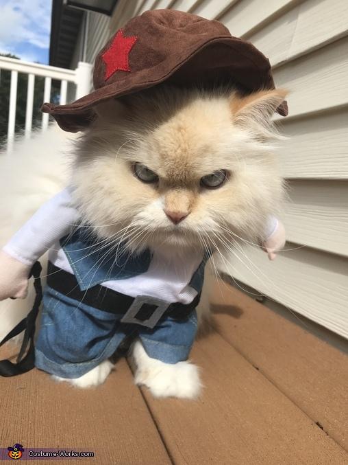 Cowboy Cat Costume Photo 4 4