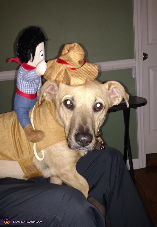 Cowboy Stewie Costume